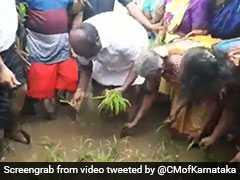 जब किसानों के साथ धान की रोपाई करने खेत में पहुंचे इस राज्य के मुख्यमंत्री, VIDEO हो रहा वायरल