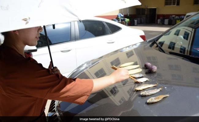 In Sizzling 40-Degree Heat, Woman Cooks Fish On Car Hood. See Pics