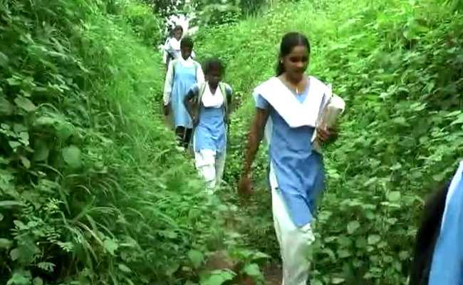 In Madhya Pradesh, Students Cross Jungle, River To Attend School
