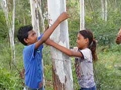 <i>Rakhis</i> And Hugs For Trees As Noida Protests Destruction Of Its Green Belt