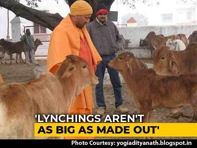"Video : ""Humans Important, So Are Cows"": Yogi Adityanath's Take On Mob Attacks"