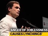 Video : In Germany, Rahul Gandhi Blames Unemployment For Lynchings