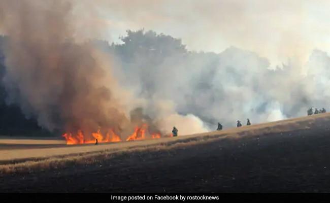 चिड़िया की वजह से लगी 17 एकड़ खेत में आग, आग बुझाने के लिए आया हेलीकॉप्टर