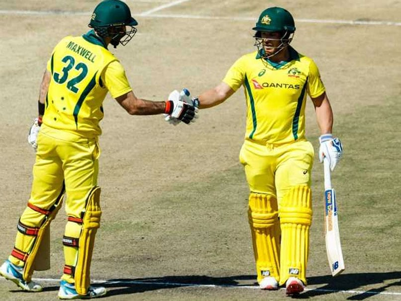 Glenn Maxwell Powers Australia To T20I Win Over Zimbabwe