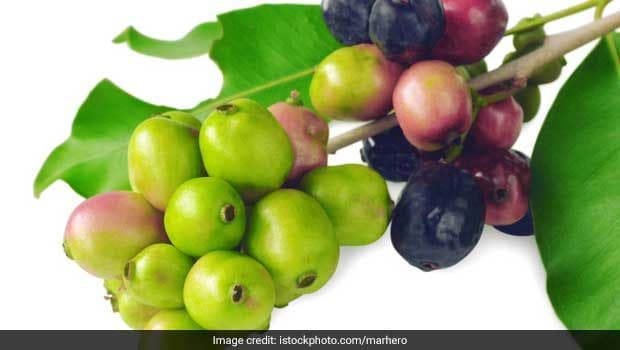 5 Most Popular Fruit Bearing Trees And Their Benefits - NDTV