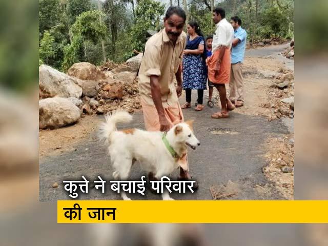 Videos : केरल में कुत्ते ने बाढ़ से बचाई परिवार की जान