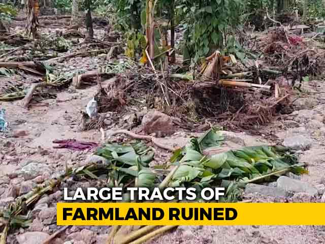 Video: Plight Of Farmers After Kerala Floods In Idukki