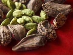 Benefits Of Cardamom: स्वाद ही नहीं आपकी सेहत के लिए भी जबरदस्त है इलायची, जानें इसके गजब फायदे