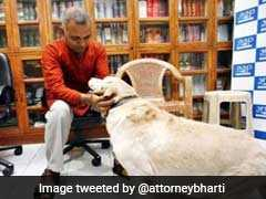 "Somnath Bharti's Pet Dog, Once ""Wanted"" In Domestic Violence Case, Dies"