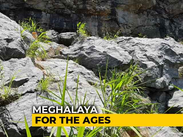 Video : How Meghalaya Defines The Time We Live In