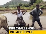 "Video : ""Follow The Bulls"": Telangana Duo's Brief For Viral Kiki Challenge Video"