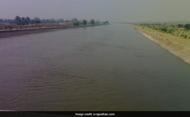 Dead Fish, Snakes In Indira Gandhi Canal, Rajasthan Stops Drinking Water Supply