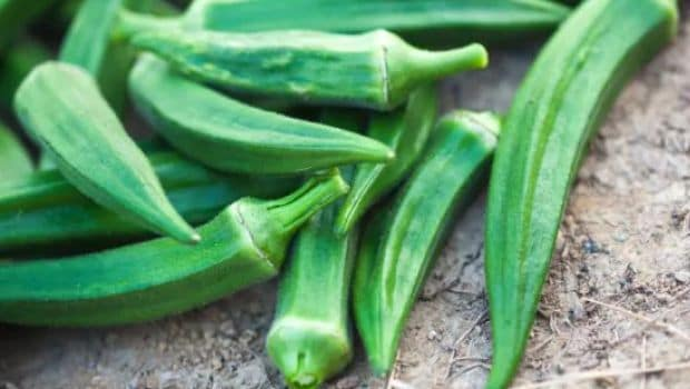 Diabetes Diet: Bhindi May Help Manage Diabetes, 5 Fun Ways To Include Bhindi In Your Diet