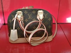 Delhi Man Sold Fake Louis Vuitton Products. That's Not Why He Was Jailed