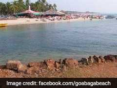 Poisonous, Jellyfish-Like Marine Organism, Spotted At Goa's Baga Beach