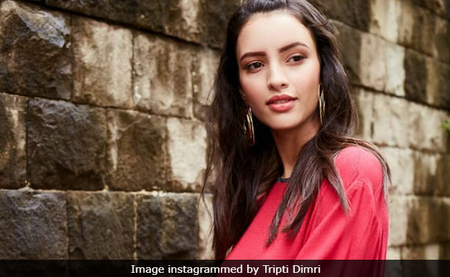 Having Lost Films To 'Established Actors,' Tripti Dimri Was 'Shocked' To Be Cast In Laila Majnu