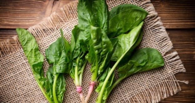 leafy veggie