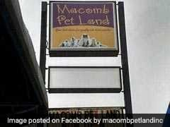 41 Dead Animals Found Inside A 'Closed For Maintenance' Pet Store