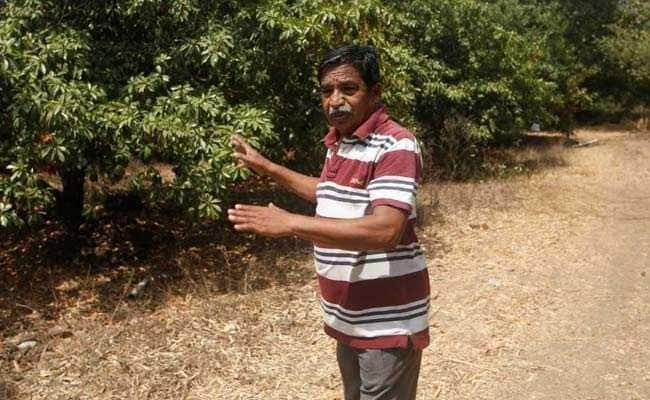 maharashtra farmer 650
