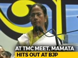 Video : At Trinamool Meet, Mamata Banerjee's Revealing Comment On Congress