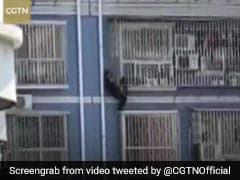 Man Scales Five Floors To Rescue Child Dangling From Window