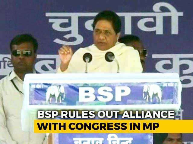 No Talks With Congress, Will Contest All Madhya Pradesh Seats: BSP Leader