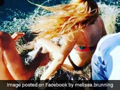 In Shocking Video, Woman Feeding Shark Gets Dragged Into Water. Watch