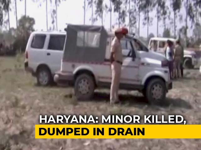 Video : 5-Year-Old Haryana Girl's Body Found In Drain, With Throat Slit