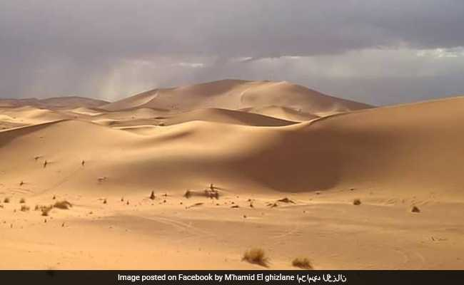 These Meteorite Hunters Are In Search For 'Lottery' In Moroccan Desert
