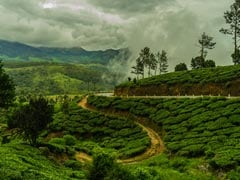 54 Stranded Tourists, Including Foreigners, Rescued From Munnar Resort