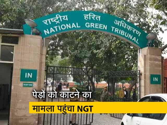 Videos : दिल्ली में पेड़ों को काटने का मामला पहुंचा NGT, कहा यथास्थिति बनाये रखें