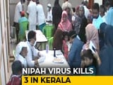 Video : 3 Dead From Mysterious Nipah Virus In Kerala, Centre Sends Team