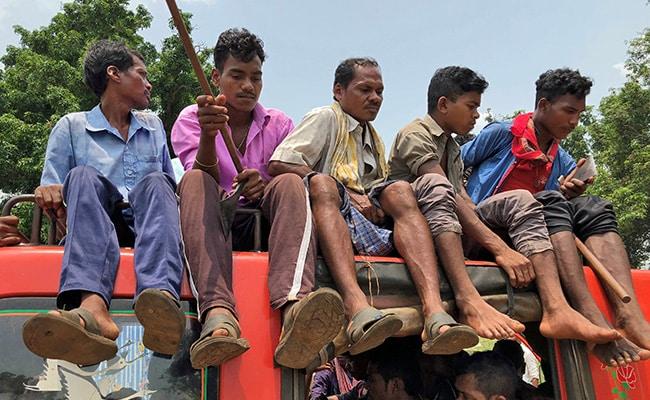 niyamgiri protest