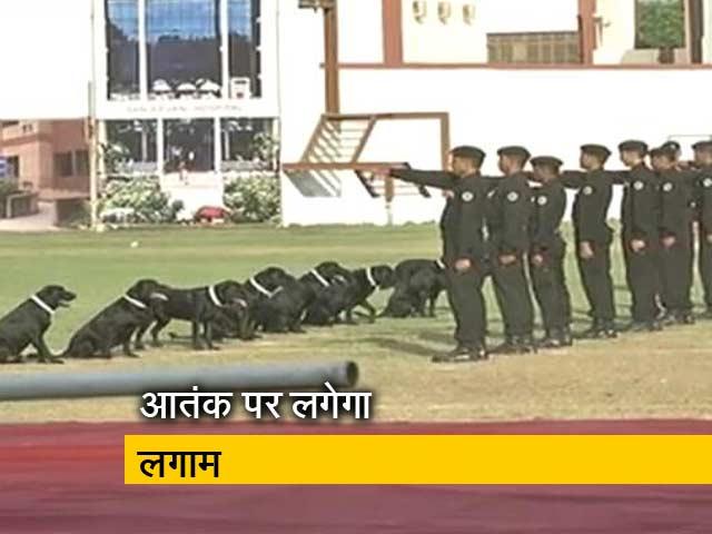 Videos : इंडिया 7 बजे : जम्मू कश्मीर में आतंकी से निपटेंगे NSG कमांडो