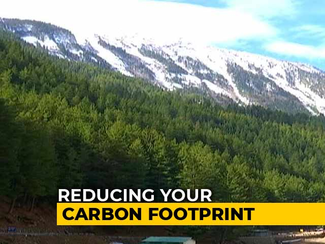 Video : Do Your Bit For The Environment, Help Save Trees