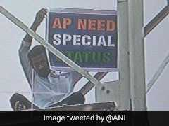 Man Demands Special Status For Andhra, Climbs Tower In Delhi