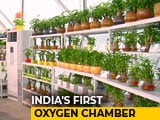 Video: Gurgaon's Oxygen Chamber Offers Breath Of Fresh Air