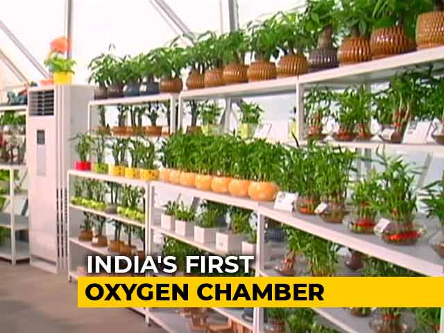 Video : Gurgaon's Oxygen Chamber Offers Breath Of Fresh Air