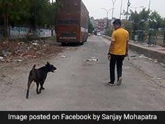 बुराड़ी केस में 11 मौतों के 22 दिन बाद परिवार के पालतू कुत्ते की मौत, जानें, क्या थी वजह