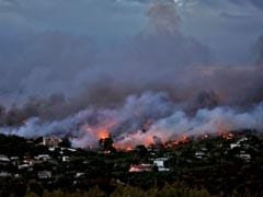 Unable To Escape, Families Die In Embrace As Greece Wildfire Kills 60