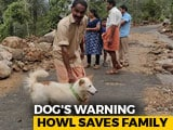 Video : How A Dog Saved A Kerala Family From Devastating Landslide