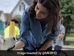 Anushka Sharma Promoted Google Pixel Using An iPhone. Promptly Trolled