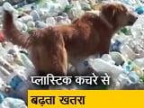 Video : 23 जून से महाराष्ट्र में प्लास्टिक पर पाबंदी