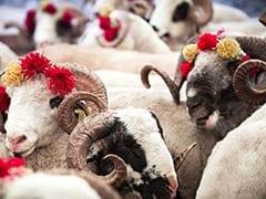 Bakrid 2020: कोरोना काल में ऑनलाइन बिक रहे हैं बकरे, की जा रही है होम डिलीवरी