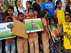 Amid Protest By Noida Residents, 3,000 Trees Cut For Rs 50 Crore Project