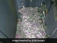 चूहों ने एटीएम मशीन में घुस कुतर डाले 12 लाख रुपये, देखें Viral Video