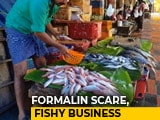 Video : Formalin Scare Hits Fish Markets In Assam; Kerala, Northeast Cautious