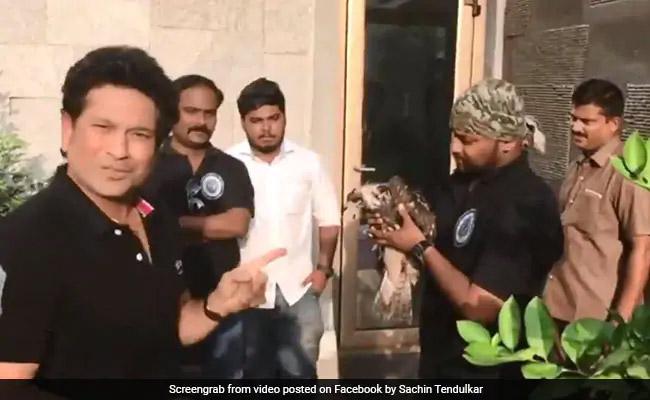 VIDEO: कौवे कर रहे थे चील पर हमला, Sachin Tendulkar ने ऐसे बचाई जान
