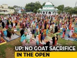 "Video : ""No Sacrifice Selfies Please"": Yogi Adityanath's Direction For Bakrid"