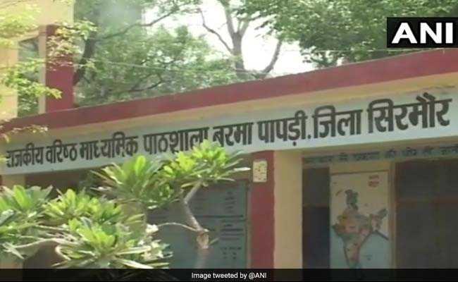 Nipah Scare In Himachal Pradesh After 18 Dead Bats Found In School